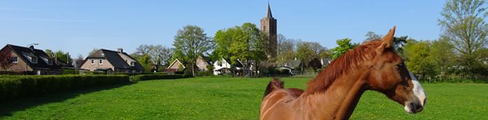 kerkpad zz-voorjaar